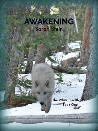 Awakening_eBook Cover