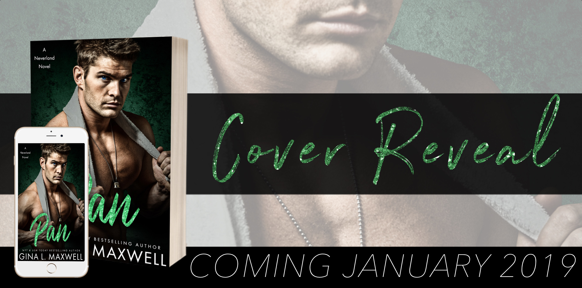Cover Reveal Banner-Pan